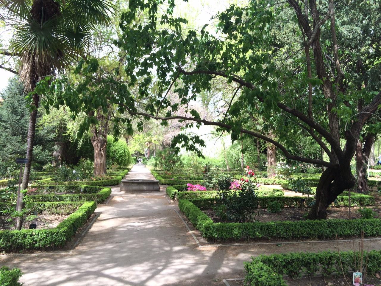 Jard n bot nico un espacio de calma y color en el centro for Centro de eventos jardin botanico