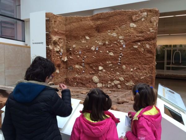 En el Museo de la Evolución Humana (Burgos)