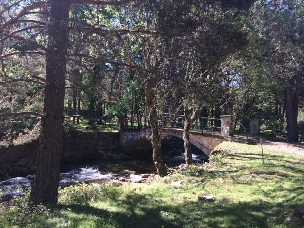 Puente por el que se cruza el río y empieza la vuelta por una pista forestal