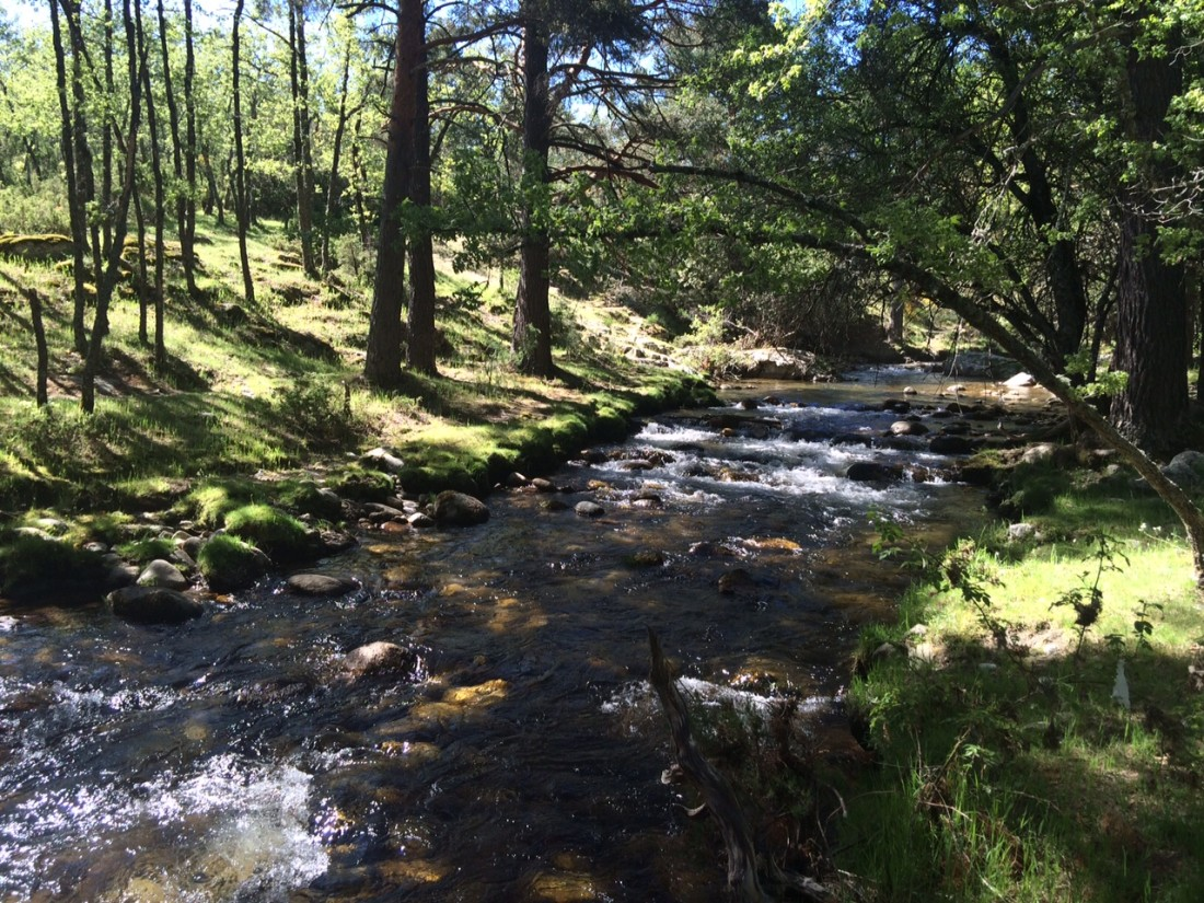Piscinas naturales de las presillas y senderismo junto al for Las presillas piscinas naturales de rascafria