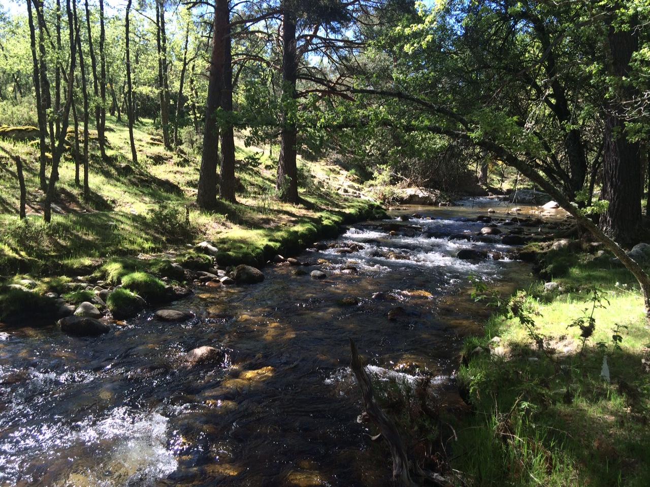 Piscinas naturales de las presillas y senderismo junto al for Piscinas naturales rio malo
