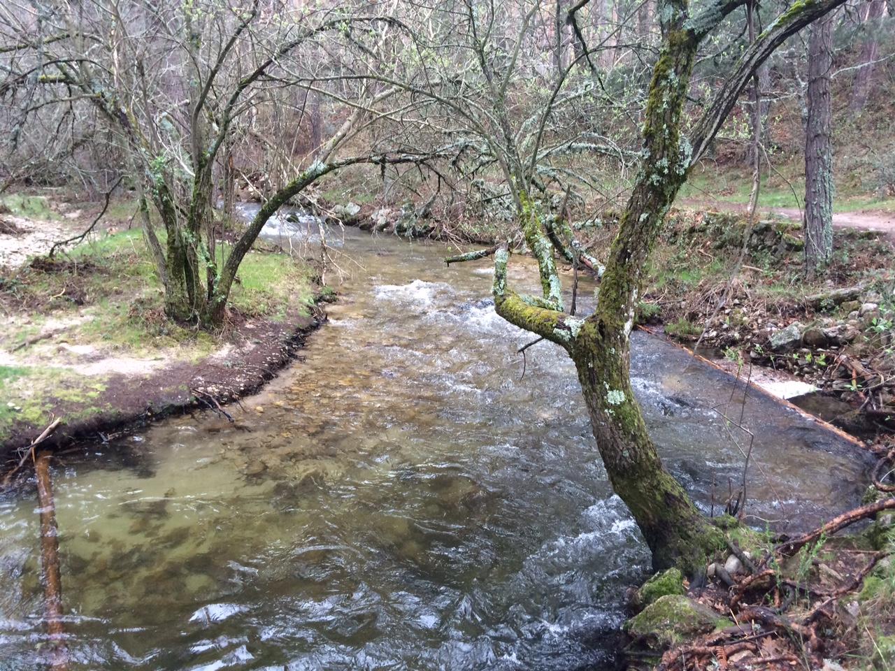 El río Perales deja imágenes preciosas en la ruta del Boca del Asno (Segovia)