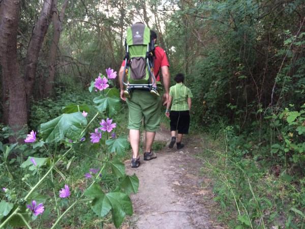 Caminando por la senda botánica de El Pardo (Madrid)