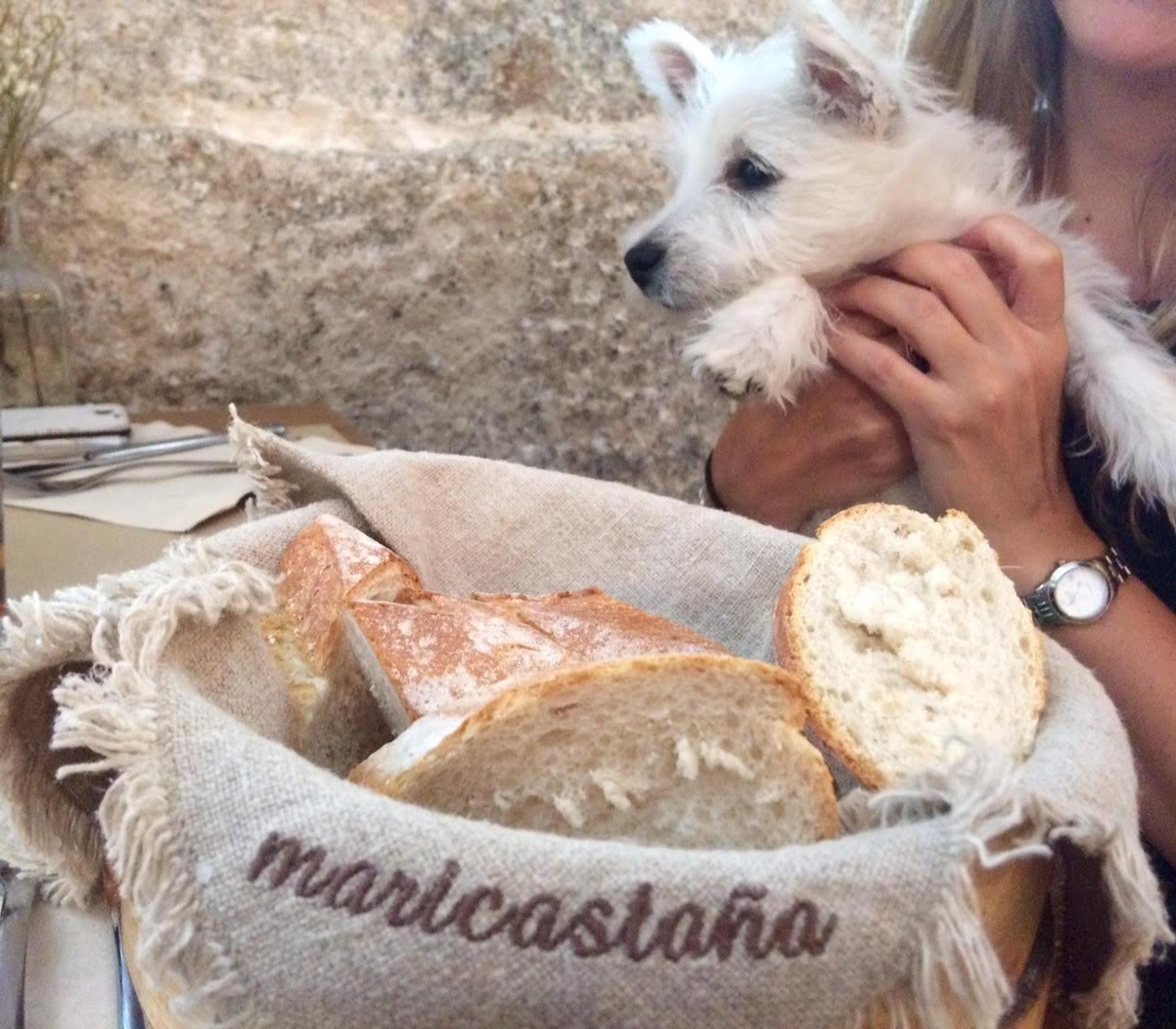 Greta en el restaurante Maricastaña (Madrid)
