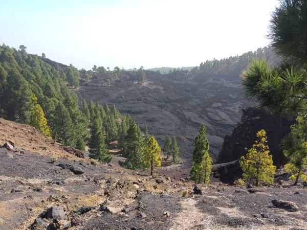 Ruta de los volcanes. La Palma