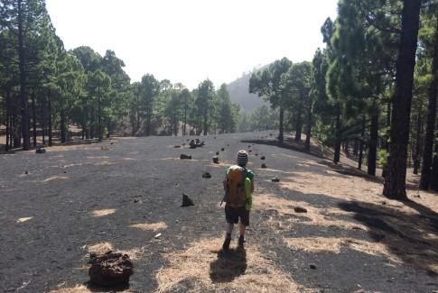 Ruta de los volcanes en La Palma