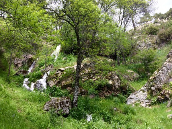 Pequeñas cascadas en el camino