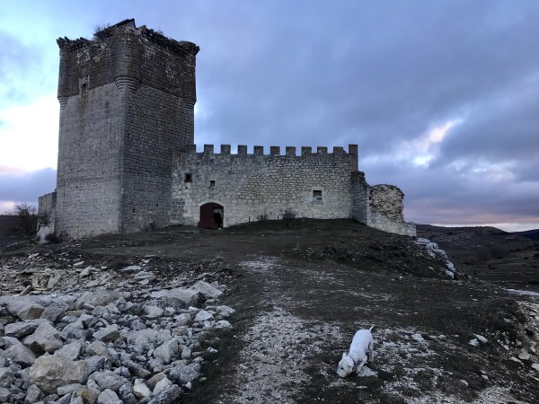 Castillo de los Zúñiga en Galve de Sorbe (Guadalajara)