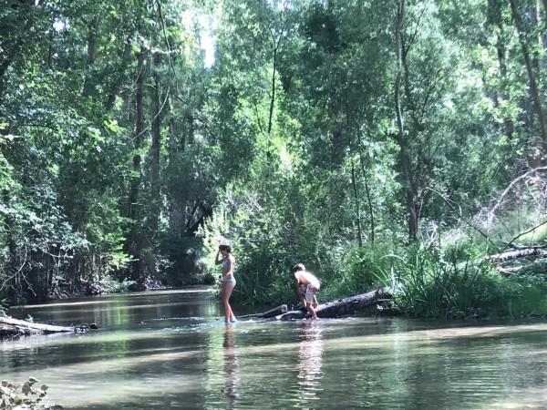 Picnic en el río Duratón