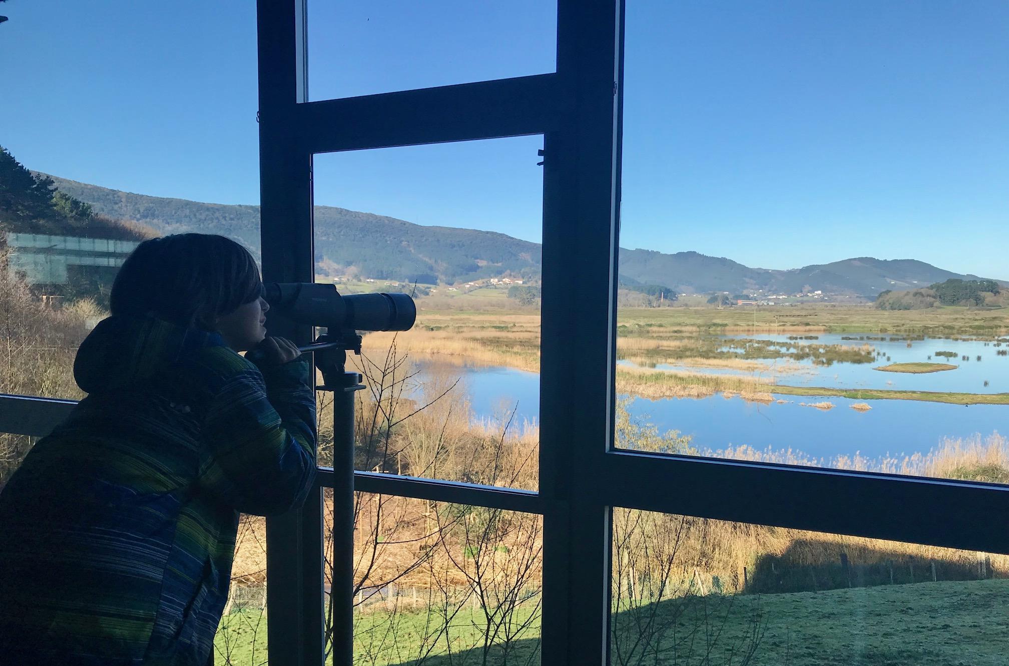 Observando aves en el Urdaibai Bird Center