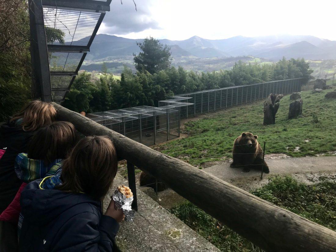 Los osos de Karpín Abentura