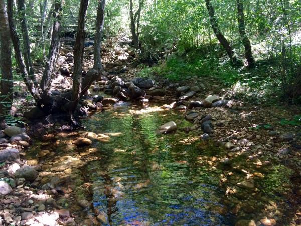 Río en el camino al Embalse de Navacerrada (Madrid)