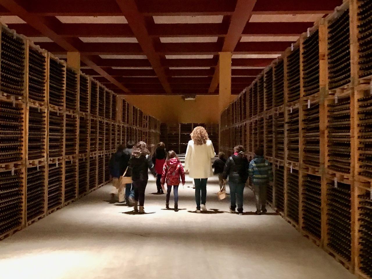 Buscando el tesoro con Ainara en las Bodegas Valdemar (La Rioja)